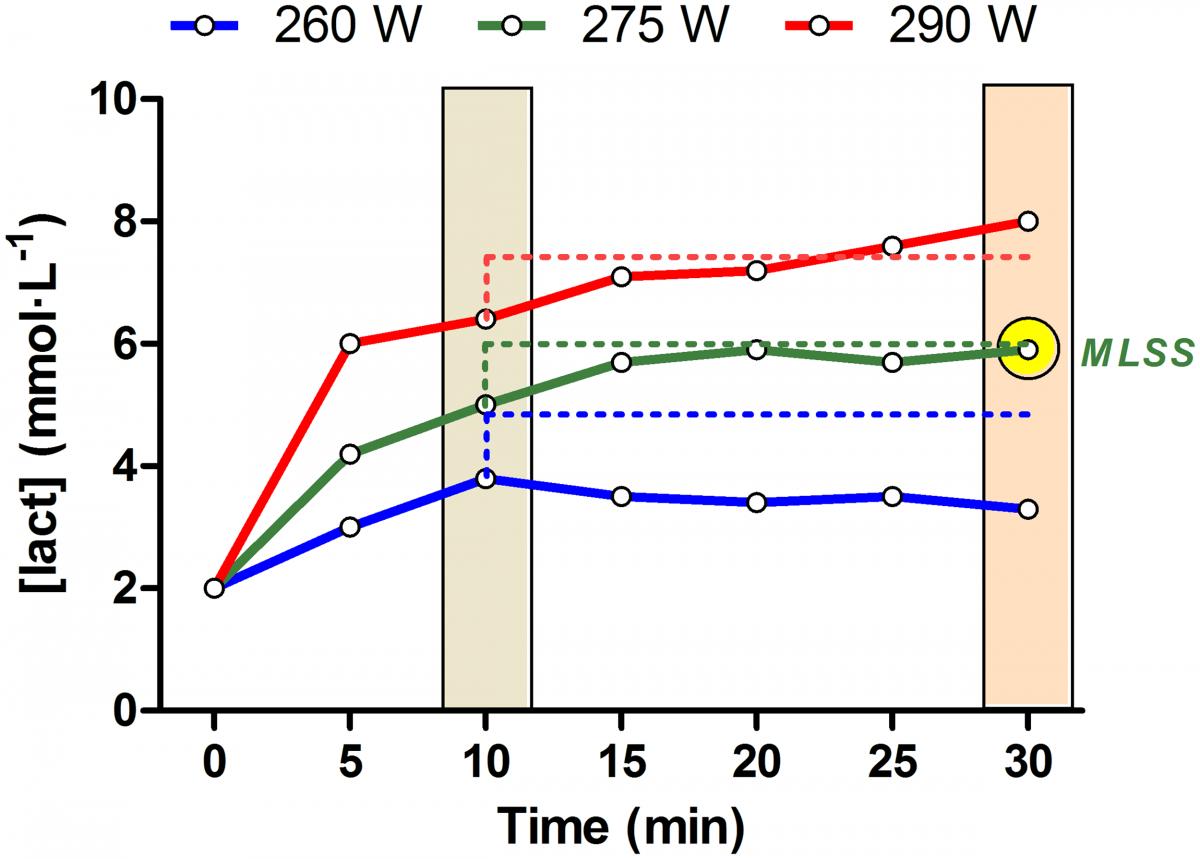 Una immagine che spiega il concetto di maximal lactate steady state.