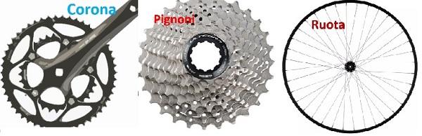 I tre elementi:Corona,denti pignoni, e ruota bici